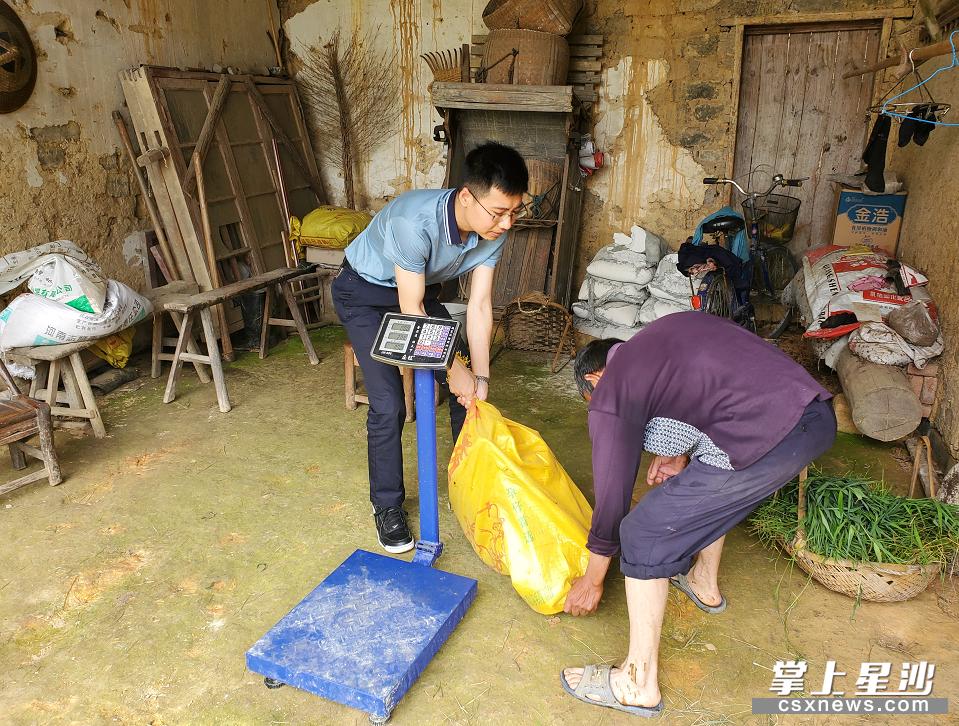 金井镇新沙村驻村工作队队长、第一书记张纬敏(左)来到大沅洞组建档立卡贫困户袁双明家,帮助他将一头已经养肥的黑山羊称重、销售。
