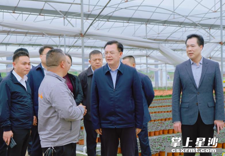 沈裕谋、张作林一行在万亩花卉园核心区,调研乡村建设及花卉产业发展情况。章帝 摄
