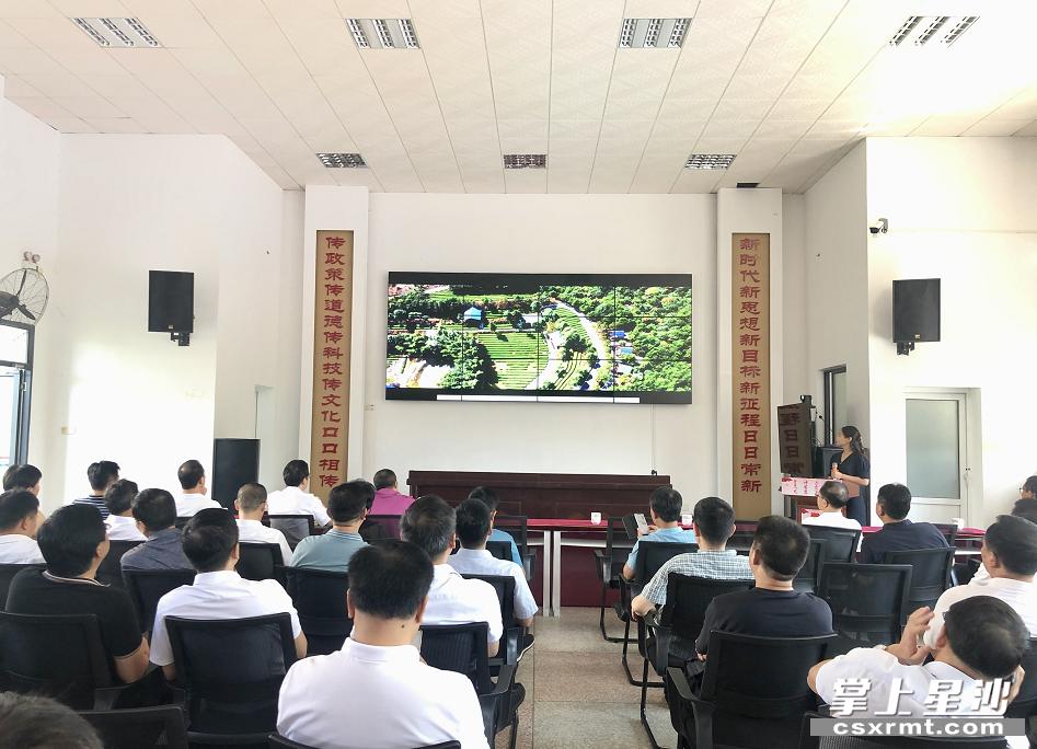 各市州文旅局主要负责人一行在长沙县福临镇文化综合服务站观看《大美福临》宣传片。林正茂 摄